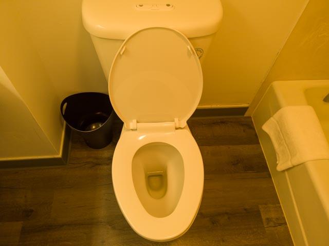 トイレはウォシュレットじゃない