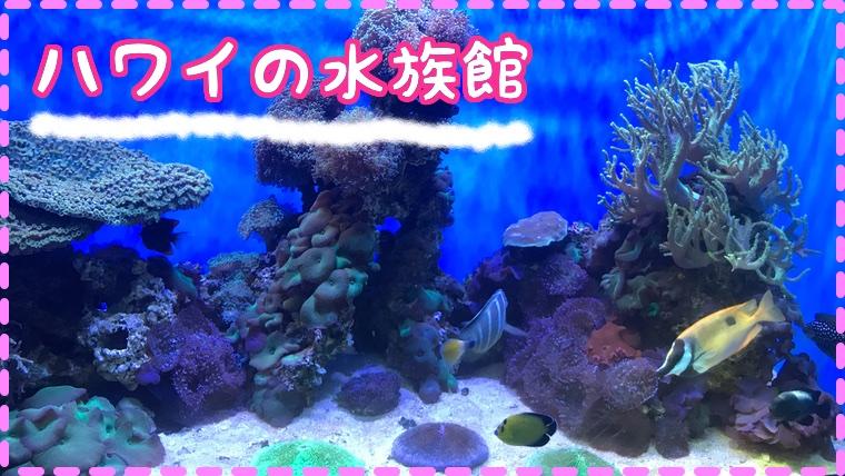 ハワイの水族館